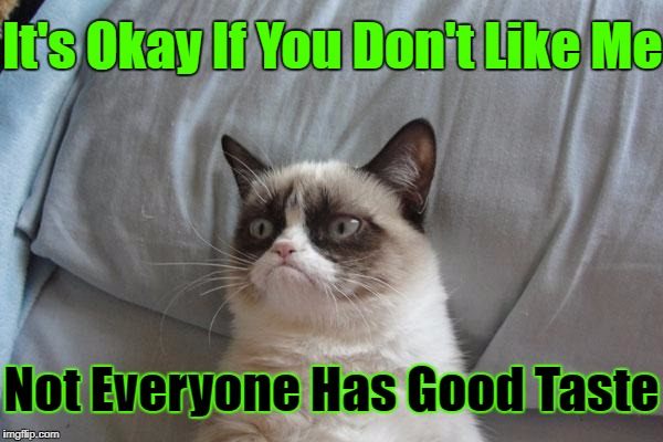 Grumpy Cat Is At It Again.... | It's Okay If You Don't Like Me Not Everyone Has Good Taste | image tagged in memes,grumpy cat bed,grumpy cat,google images,craziness_all_the_way,grumpy cat insults | made w/ Imgflip meme maker