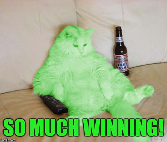 RayCat Chillin' | SO MUCH WINNING! | image tagged in raycat chillin' | made w/ Imgflip meme maker
