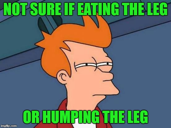 Futurama Fry Meme | NOT SURE IF EATING THE LEG OR HUMPING THE LEG | image tagged in memes,futurama fry | made w/ Imgflip meme maker
