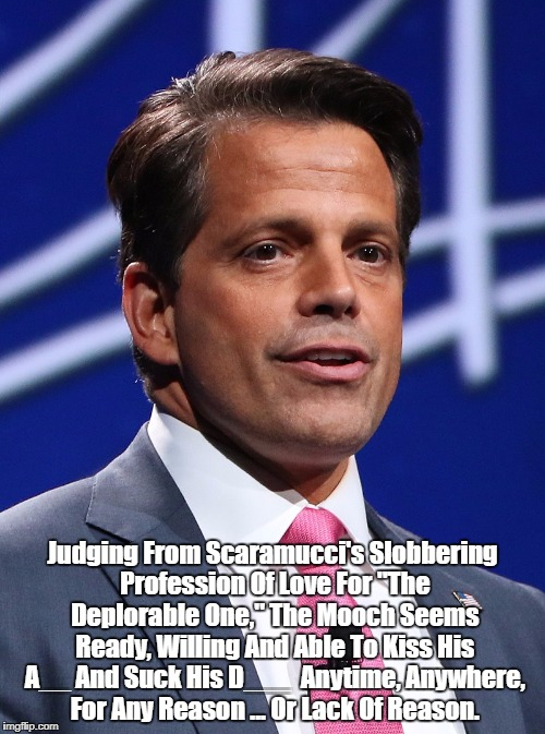 "Judging From Scaramucci's Slobbering Profession Of Love For ""The Deplorable One,"" The Mooch Seems Ready, Willing And Able To Kiss His A__ An 