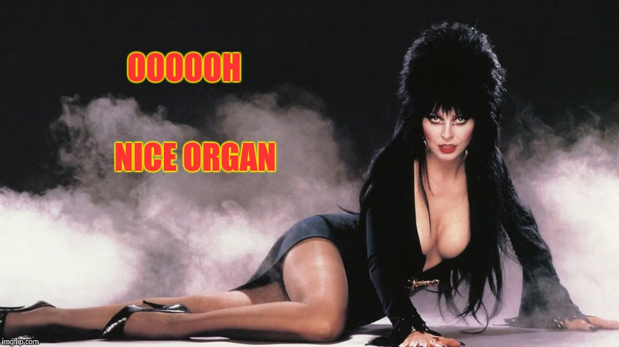 Elvira | OOOOOH NICE ORGAN | image tagged in elvira | made w/ Imgflip meme maker