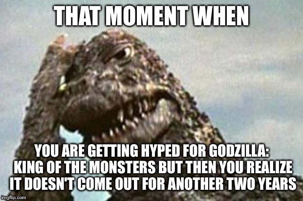 Godzilla Facepalm | THAT MOMENT WHEN YOU ARE GETTING HYPED FOR GODZILLA: KING OF THE MONSTERS BUT THEN YOU REALIZE IT DOESN'T COME OUT FOR ANOTHER TWO YEARS | image tagged in godzilla facepalm | made w/ Imgflip meme maker