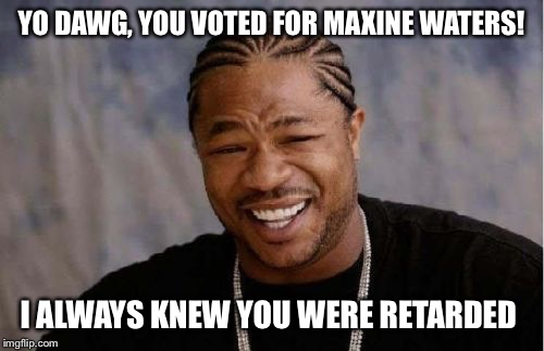 Yo Dawg Heard You Meme | YO DAWG, YOU VOTED FOR MAXINE WATERS! I ALWAYS KNEW YOU WERE RETARDED | image tagged in memes,yo dawg heard you | made w/ Imgflip meme maker
