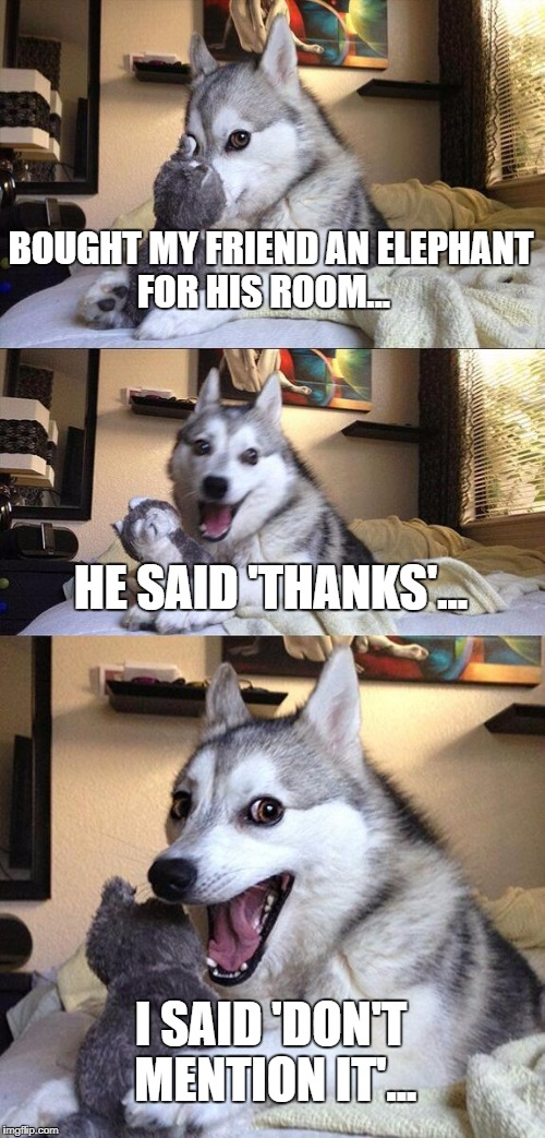 Bad Pun Dog Meme | BOUGHT MY FRIEND AN ELEPHANT FOR HIS ROOM... HE SAID 'THANKS'... I SAID 'DON'T MENTION IT'... | image tagged in memes,bad pun dog | made w/ Imgflip meme maker