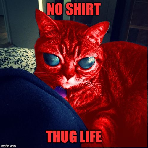 RayCat Aliens | NO SHIRT THUG LIFE | image tagged in raycat aliens | made w/ Imgflip meme maker