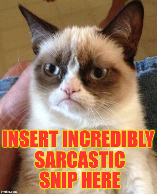 Grumpy Cat Meme | INSERT INCREDIBLY SARCASTIC SNIP HERE | image tagged in memes,grumpy cat | made w/ Imgflip meme maker