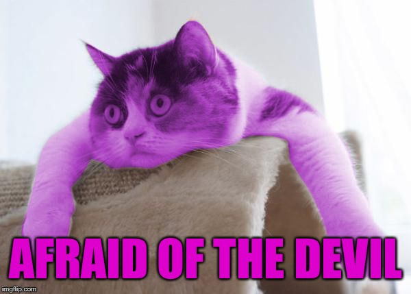 RayCat Stare | AFRAID OF THE DEVIL | image tagged in raycat stare | made w/ Imgflip meme maker