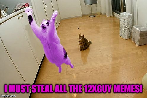 RayCat save the world | I MUST STEAL ALL THE 12XGUY MEMES! | image tagged in raycat save the world | made w/ Imgflip meme maker