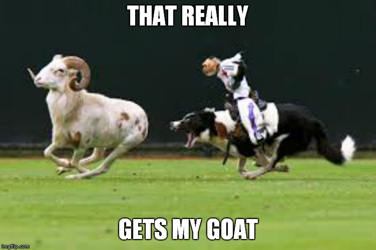 THAT REALLY GETS MY GOAT | made w/ Imgflip meme maker