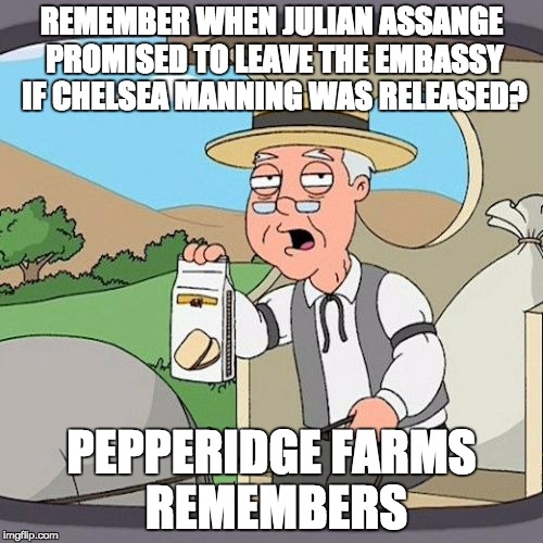 Pepperidge Farm Remembers Meme | REMEMBER WHEN JULIAN ASSANGE PROMISED TO LEAVE THE EMBASSY IF CHELSEA MANNING WAS RELEASED? PEPPERIDGE FARMS REMEMBERS | image tagged in memes,pepperidge farm remembers,AdviceAnimals | made w/ Imgflip meme maker