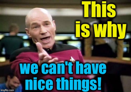 Picard Wtf Meme | This is why we can't have nice things! | image tagged in memes,picard wtf | made w/ Imgflip meme maker