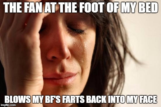 First World Problems Meme | THE FAN AT THE FOOT OF MY BED BLOWS MY BF'S FARTS BACK INTO MY FACE | image tagged in memes,first world problems | made w/ Imgflip meme maker