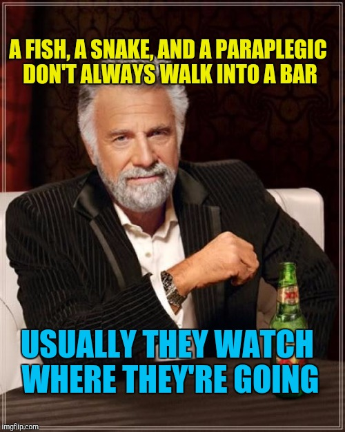 Swimin', Slitherin', & Slip-Slidin' Away | A FISH, A SNAKE, AND A PARAPLEGIC DON'T ALWAYS WALK INTO A BAR USUALLY THEY WATCH WHERE THEY'RE GOING | image tagged in memes,the most interesting man in the world | made w/ Imgflip meme maker