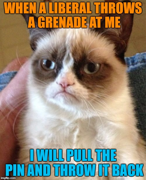 Grumpy Cat Meme | WHEN A LIBERAL THROWS A GRENADE AT ME I WILL PULL THE PIN AND THROW IT BACK | image tagged in memes,grumpy cat | made w/ Imgflip meme maker
