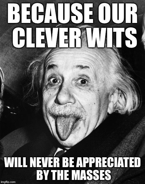 Einstein | BECAUSE OUR CLEVER WITS WILL NEVER BE APPRECIATED BY THE MASSES | image tagged in einstein | made w/ Imgflip meme maker