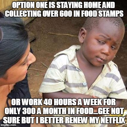 Third World Skeptical Kid Meme | OPTION ONE IS STAYING HOME AND COLLECTING OVER 600 IN FOOD STAMPS OR WORK 40 HOURS A WEEK FOR ONLY 300 A MONTH IN FOOD...GEE NOT SURE BUT I  | image tagged in memes,third world skeptical kid | made w/ Imgflip meme maker