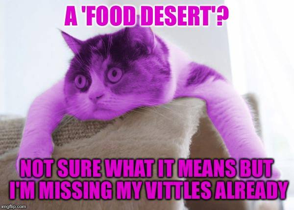 RayCat Stare | A 'FOOD DESERT'? NOT SURE WHAT IT MEANS BUT I'M MISSING MY VITTLES ALREADY | image tagged in raycat stare | made w/ Imgflip meme maker