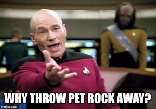 Picard Wtf Meme | WHY THROW PET ROCK AWAY? | image tagged in memes,picard wtf | made w/ Imgflip meme maker
