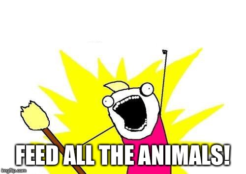 X All The Y Meme | FEED ALL THE ANIMALS! | image tagged in memes,x all the y | made w/ Imgflip meme maker