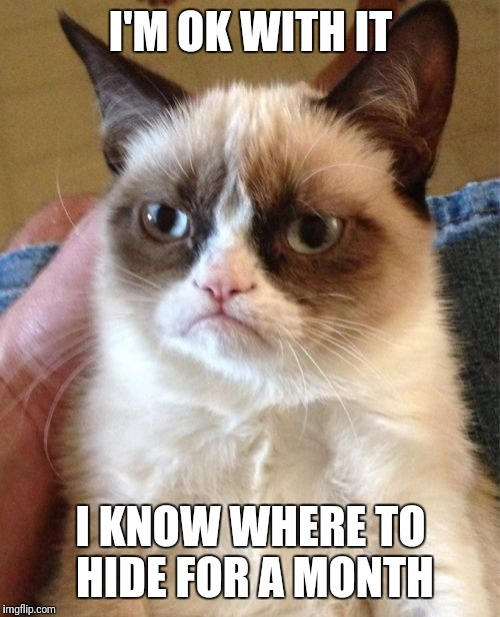 Grumpy Cat Meme | I'M OK WITH IT I KNOW WHERE TO HIDE FOR A MONTH | image tagged in memes,grumpy cat | made w/ Imgflip meme maker