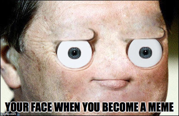YOUR FACE WHEN YOU BECOME A MEME | image tagged in disapproval | made w/ Imgflip meme maker