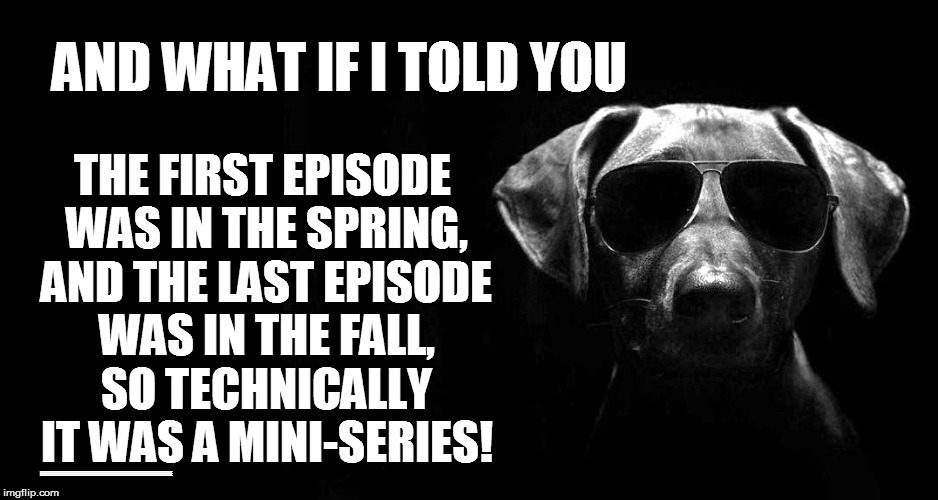 AND WHAT IF I TOLD YOU THE FIRST EPISODE WAS IN THE SPRING, AND THE LAST EPISODE WAS IN THE FALL, SO TECHNICALLY IT WAS A MINI-SERIES! EEEEE | made w/ Imgflip meme maker