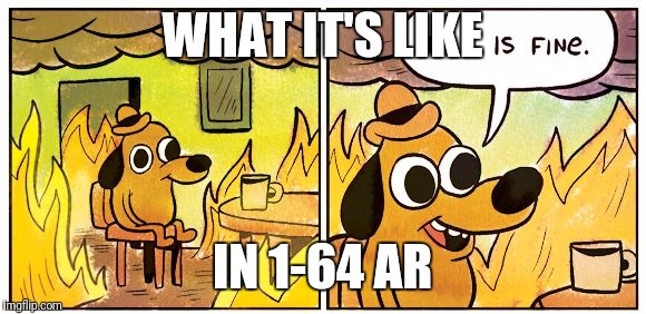 This is fine dog | WHAT IT'S LIKE IN 1-64 AR | image tagged in this is fine dog | made w/ Imgflip meme maker