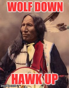 WOLF DOWN HAWK UP | made w/ Imgflip meme maker