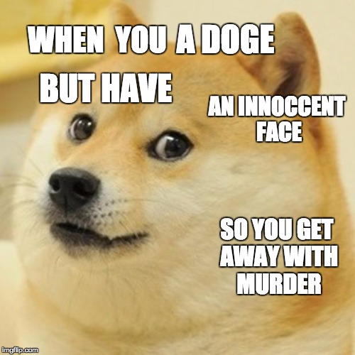 Doge Meme | WHEN  YOU A DOGE BUT HAVE AN INNOCCENT FACE SO YOU GET AWAY WITH MURDER | image tagged in memes,doge | made w/ Imgflip meme maker