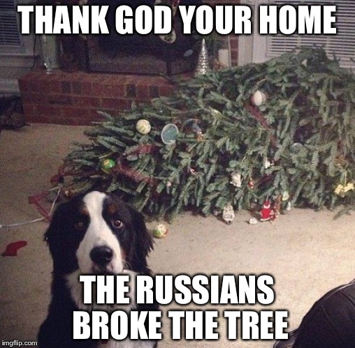 Dog Christmas Tree | THANK GOD YOUR HOME THE RUSSIANS BROKE THE TREE | image tagged in dog christmas tree,memes,repost,reposts,stolen memes week | made w/ Imgflip meme maker