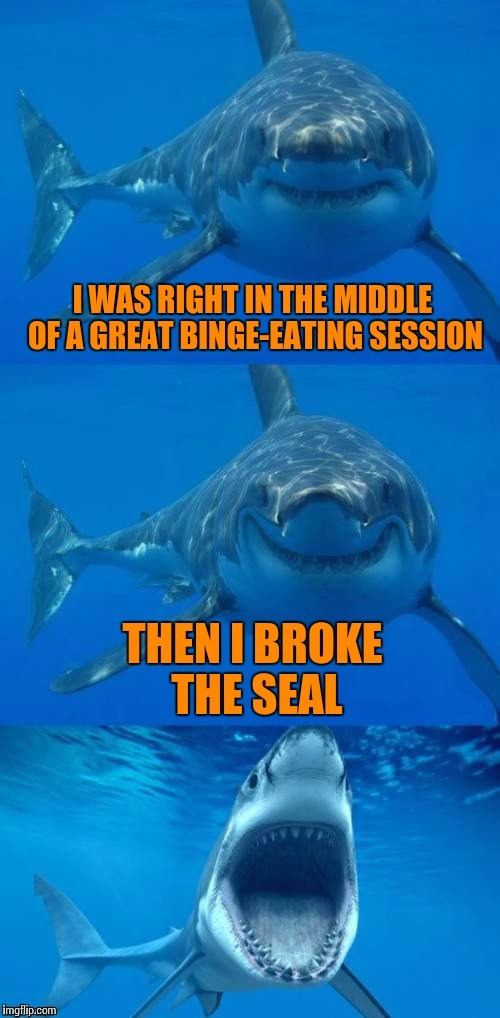 Breaking the Seal, Shark Week, July 24-30, a Raydog/Discovery Channel event | . | image tagged in shark week,bad shark pun,sharks,food,memes | made w/ Imgflip meme maker
