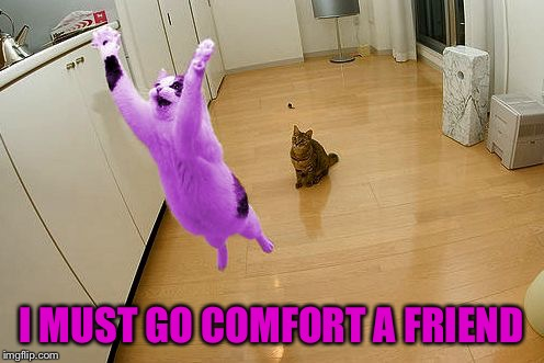 RayCat save the world | I MUST GO COMFORT A FRIEND | image tagged in raycat save the world | made w/ Imgflip meme maker