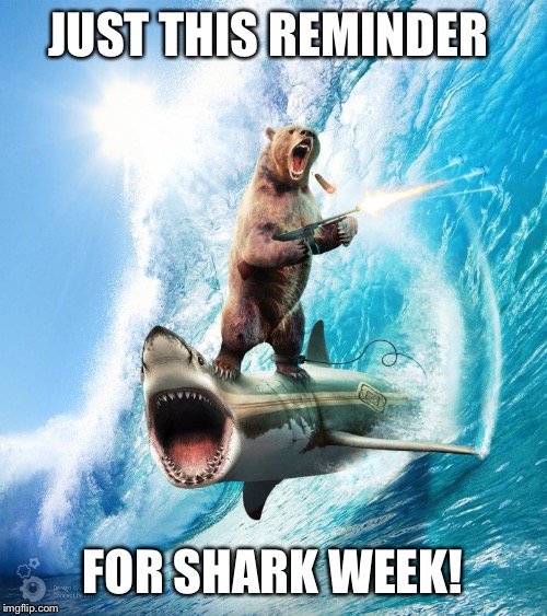 Bear Riding Shark | JUST THIS REMINDER FOR SHARK WEEK! | image tagged in bear riding shark | made w/ Imgflip meme maker