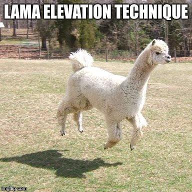 Transcendental Lama | LAMA ELEVATION TECHNIQUE | image tagged in memes,funny,fly,transcendental,lama,elevation | made w/ Imgflip meme maker