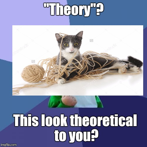 "Success Kid Meme | ""Theory""? This look theoretical to you? 