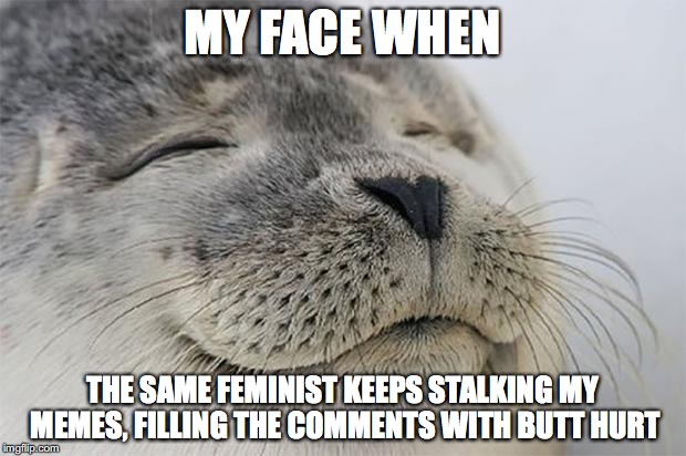 Keep commenting and I'll keep offending. I promise. | MY FACE WHEN THE SAME FEMINIST KEEPS STALKING MY MEMES, FILLING THE COMMENTS WITH BUTT HURT | image tagged in memes,satisfied seal | made w/ Imgflip meme maker