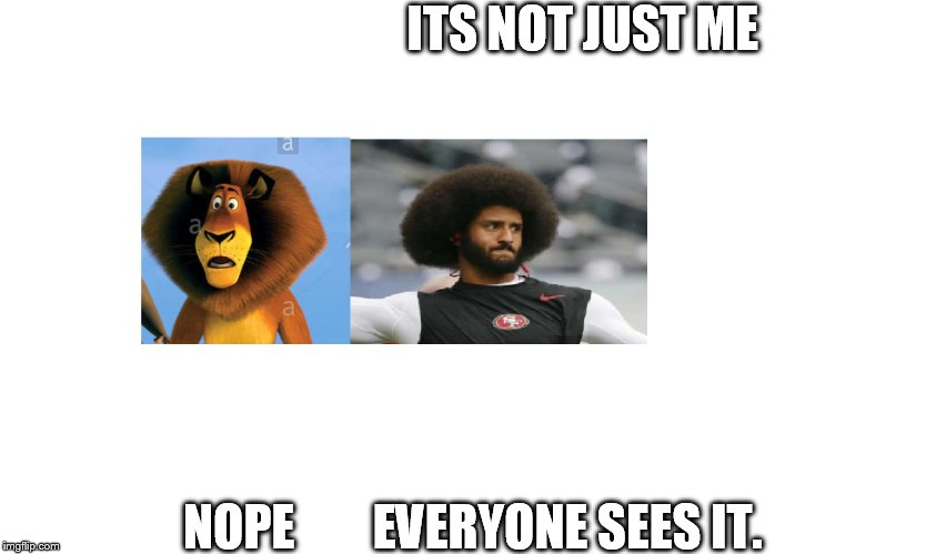 ITS NOT JUST ME; NOPE        EVERYONE SEES IT. | image tagged in colin kaepernick,madagascar,funny picture | made w/ Imgflip meme maker