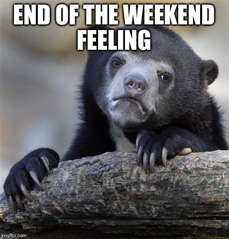 Confession Bear Meme | END OF THE WEEKEND FEELING | image tagged in memes,confession bear | made w/ Imgflip meme maker