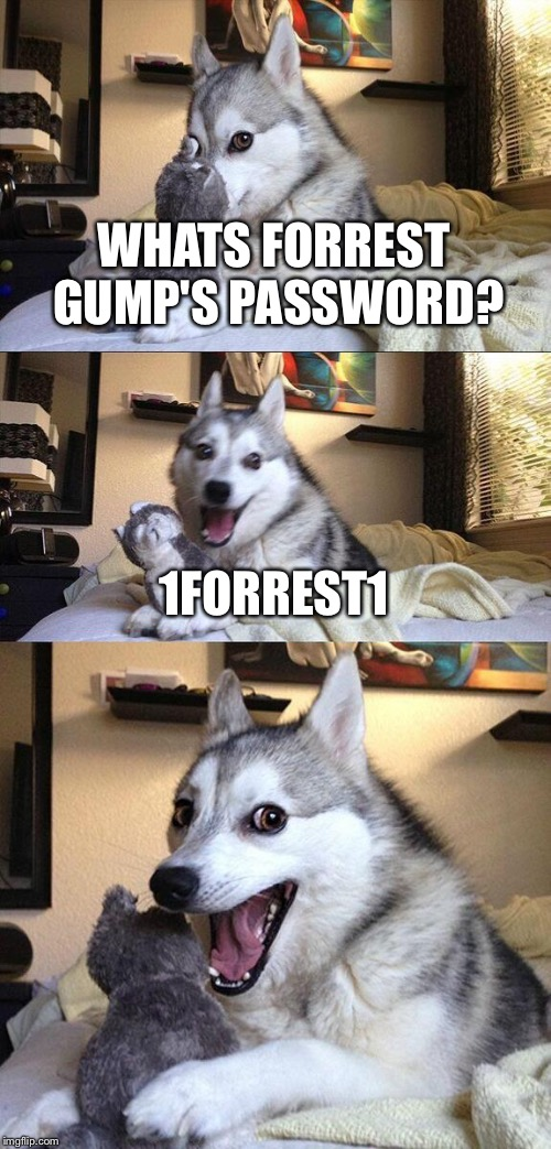 Bad Pun Dog Meme | WHATS FORREST GUMP'S PASSWORD? 1FORREST1 | image tagged in memes,bad pun dog | made w/ Imgflip meme maker