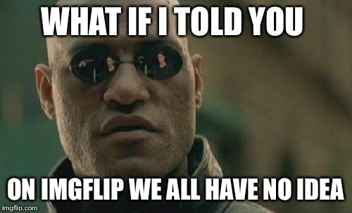 Matrix Morpheus Meme | WHAT IF I TOLD YOU ON IMGFLIP WE ALL HAVE NO IDEA | image tagged in memes,matrix morpheus | made w/ Imgflip meme maker