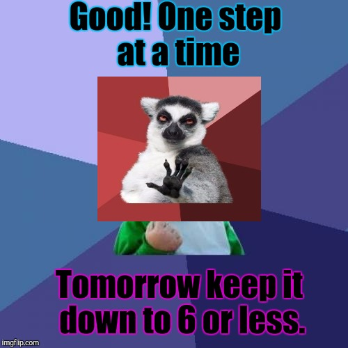 Success Kid Meme | Good! One step at a time Tomorrow keep it down to 6 or less. | image tagged in memes,success kid | made w/ Imgflip meme maker