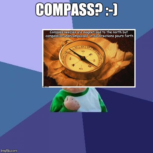 Success Kid Meme | COMPASS? :-) | image tagged in memes,success kid | made w/ Imgflip meme maker