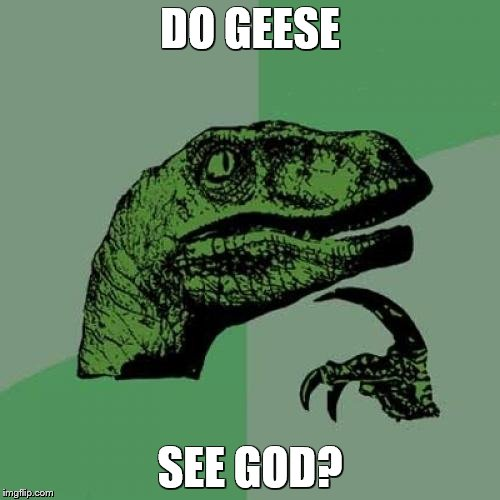 Read the caption backwards | DO GEESE SEE GOD? | image tagged in memes,philosoraptor,palindrome | made w/ Imgflip meme maker