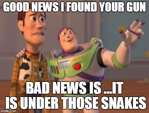 X, X Everywhere Meme | GOOD NEWS I FOUND YOUR GUN BAD NEWS IS ...IT IS UNDER THOSE SNAKES | image tagged in memes,x,x everywhere,x x everywhere | made w/ Imgflip meme maker