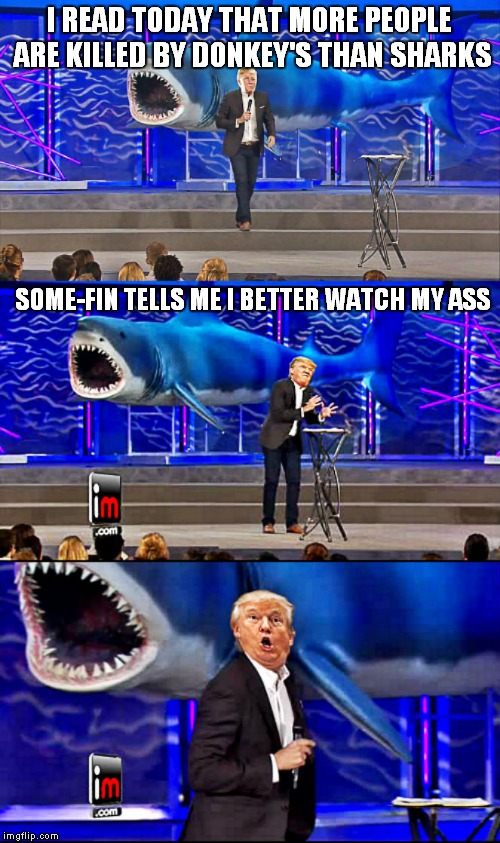 A jawsome new template for shark week! A Raydog event 23rd though the 30th! | I READ TODAY THAT MORE PEOPLE ARE KILLED BY DONKEY'S THAN SHARKS SOME-FIN TELLS ME I BETTER WATCH MY ASS | image tagged in trump and shark bad pun,shark week | made w/ Imgflip meme maker