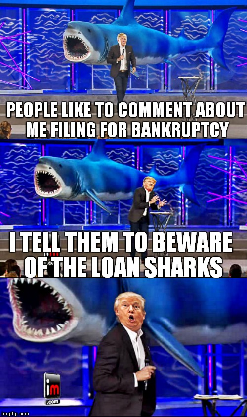One more for the flipper...  Shark week a Raydog event! | PEOPLE LIKE TO COMMENT ABOUT ME FILING FOR BANKRUPTCY I TELL THEM TO BEWARE OF THE LOAN SHARKS | image tagged in trump and shark bad pun,shark week | made w/ Imgflip meme maker
