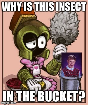 WHY IS THIS INSECT IN THE BUCKET? | made w/ Imgflip meme maker
