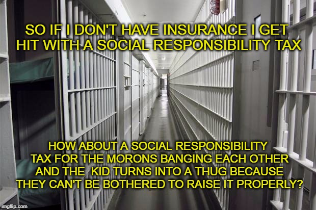 Real Social Responsibility | SO IF I DON'T HAVE INSURANCE I GET HIT WITH A SOCIAL RESPONSIBILITY TAX HOW ABOUT A SOCIAL RESPONSIBILITY TAX FOR THE MORONS BANGING EACH OT | image tagged in price to society,costly thugs | made w/ Imgflip meme maker
