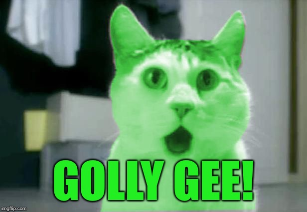 OMG RayCat | GOLLY GEE! | image tagged in omg raycat | made w/ Imgflip meme maker