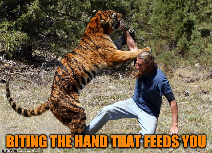 BITING THE HAND THAT FEEDS YOU | made w/ Imgflip meme maker